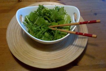 OPCG Green Salad